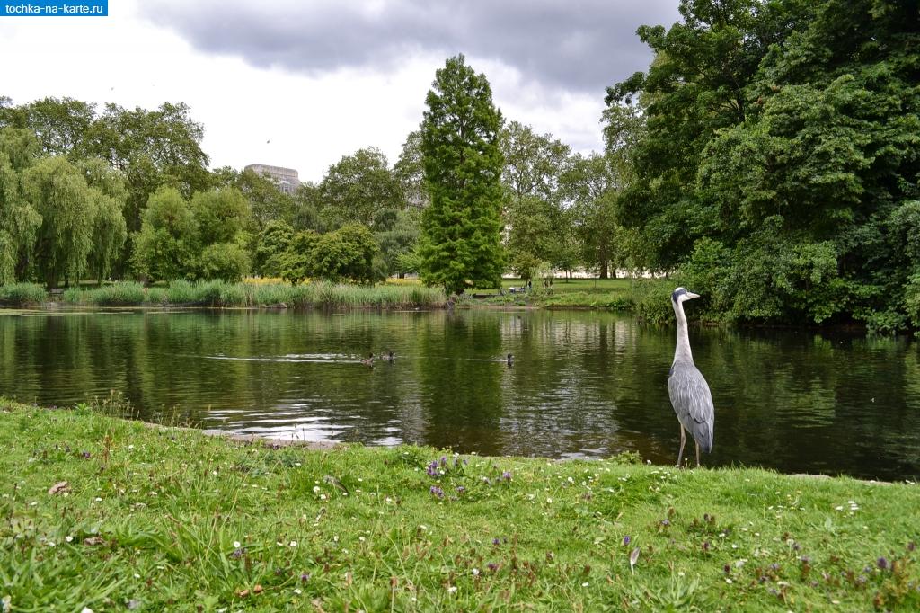 Сент-Джеймс Парк в Лондоне - Лондон - фото